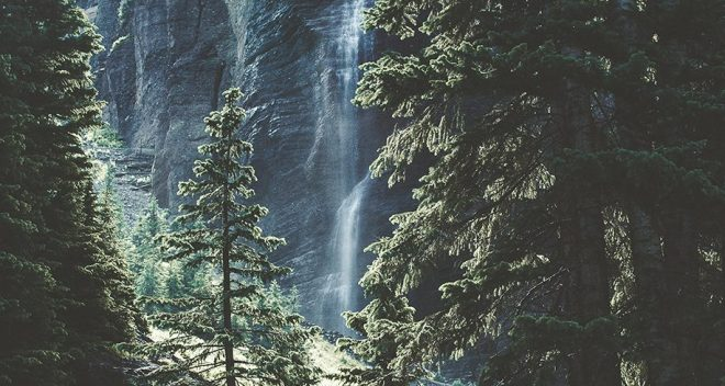 Waterfall behind a forest of trees