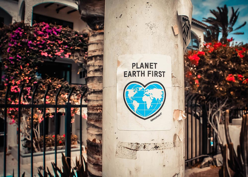 Planet Earth First poster on a street pole