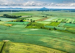 Land with green pastures and windmills